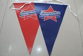 Flag 1,8 m (6 fut) ekologik solventli printer yordamida bosilgan mato panneri WER-ES1801 2