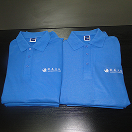Polo ko'ylak A3 t shirt printer WER-E2000T tomonidan tayyorlangan bosma namunadir