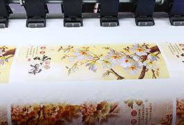 O'zini yopishqoq vinil 1,8 m (6 fut) eko solventli printer WER-ES1802 tomonidan ishlab chiqilgan